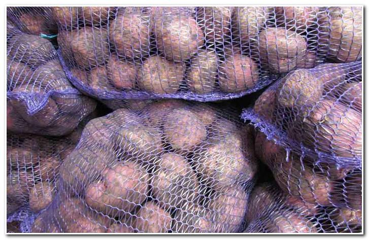 хранение картофеля романо