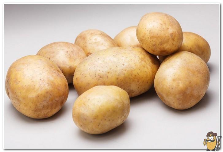 kartofel-rivera