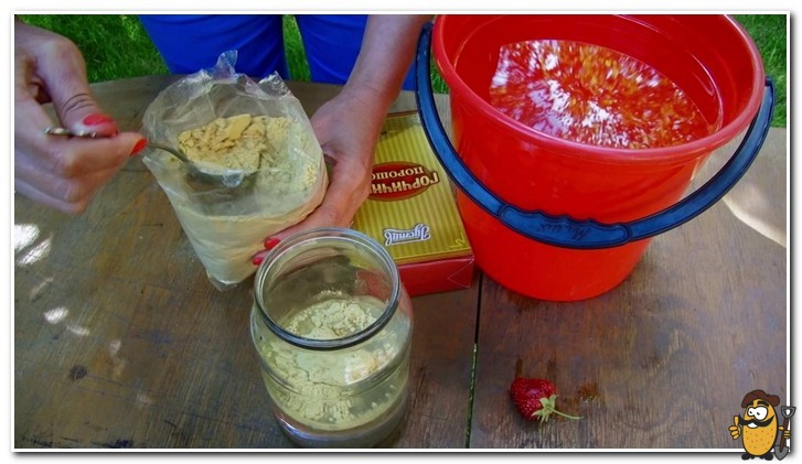 раствор горчицы и уксуса