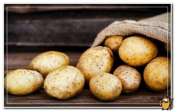 картофель мелодия