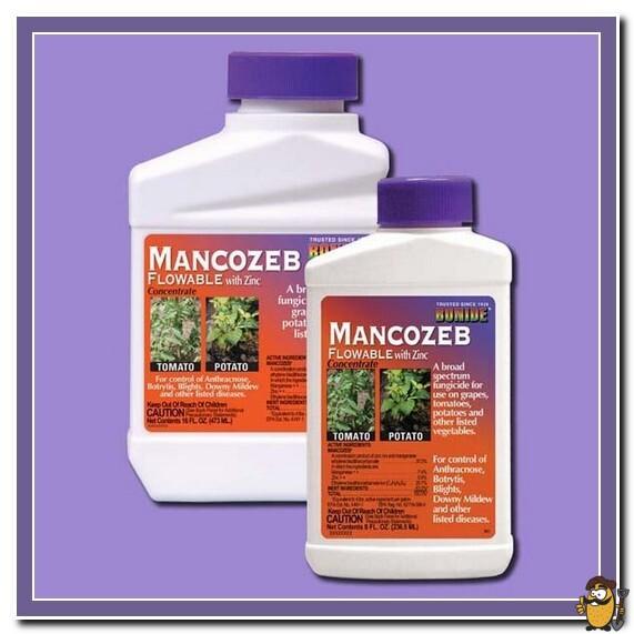 fungicide-Mancozeb