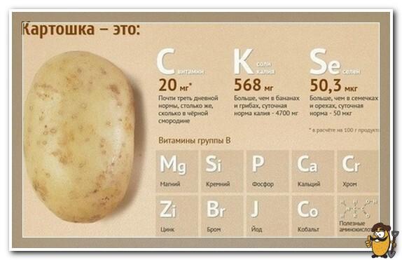 картошка это