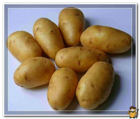 kartofel-lorh