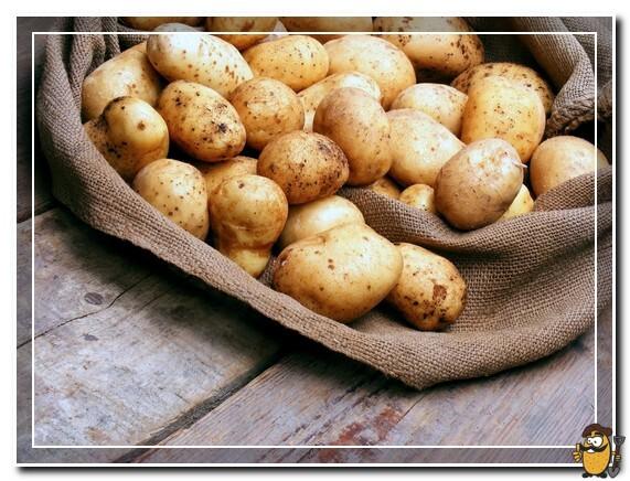 андретта картофель