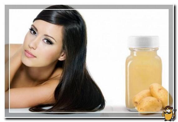 картофель для волос