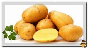 kartofel-lasunok